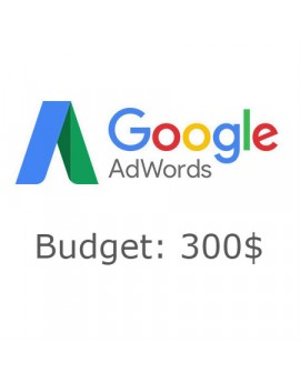 Google Adwords - 300$